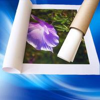 Primed 220gsm Pure Cotton Matte Waterproof Inkjet Canvas Roll