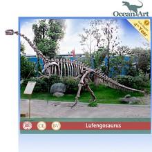 Outdoor playground equipment dinosaur skeleton for sale