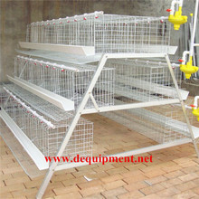 DINGTUO Poultry Battery Cage For Nigerian Farm