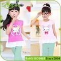 2015 amostra grátis a roupa das crianças meninas t camisa 100 algodão kidsgirl roupas china little queen vestido da menina