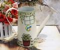 Gran jardín lata pintada a mano de la flor jarra ducha maceta boca de cañón largo elegante