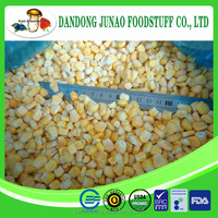 iqf sweet corn for export standard