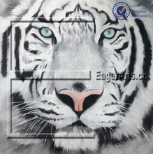 Modern Tiger Animal Canvas Oil Paintings