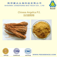best price high quality extract angelica root extract