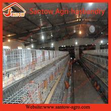 Nuevo diseño de pollo para granja de aves de corral para nigeria