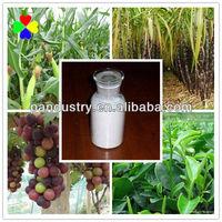 CAS NO.1912-24-9 High Quality Best Price Atrazine 80% WP