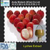 Pure Natural Lychee Seed Extract 10:1