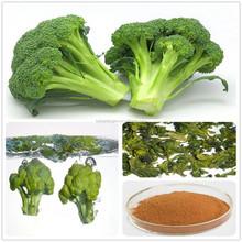 fresh broccoli powder/bulk broccoli extract/dried broccoli powder