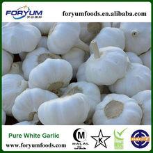Fresh Pure White Garlic 5.0cm Packed In Carton