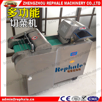 Factory price leafy vegetable and fruit shredder machine