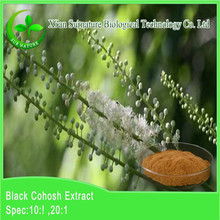 Natural black cohosh extract powder Best Selling 10:1