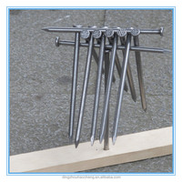 10d polished common iron nails with low price