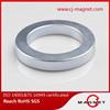 permanent radial magnetization ring neodymium magnet