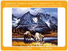 Hot selling DIY oil painting by number sets 30*40cm