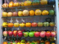 EPS foam Artificial pumpkins to decorate