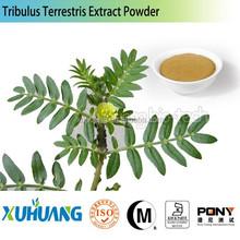 For Men Health! Organic tribulus extract powder Saponins 20%-98%