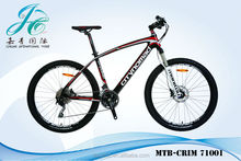 China carbon mountain bike for sale