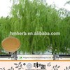 High Quality White willow Bark Extract/5%-98% salicin HPLC