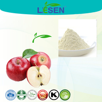 ISO factory supply Apple freeze dried powder , Apple juice powder , Apple FD Powder