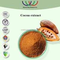 hot sale GMP factory supply high quality nature polyphenols wholesale cocoa powder