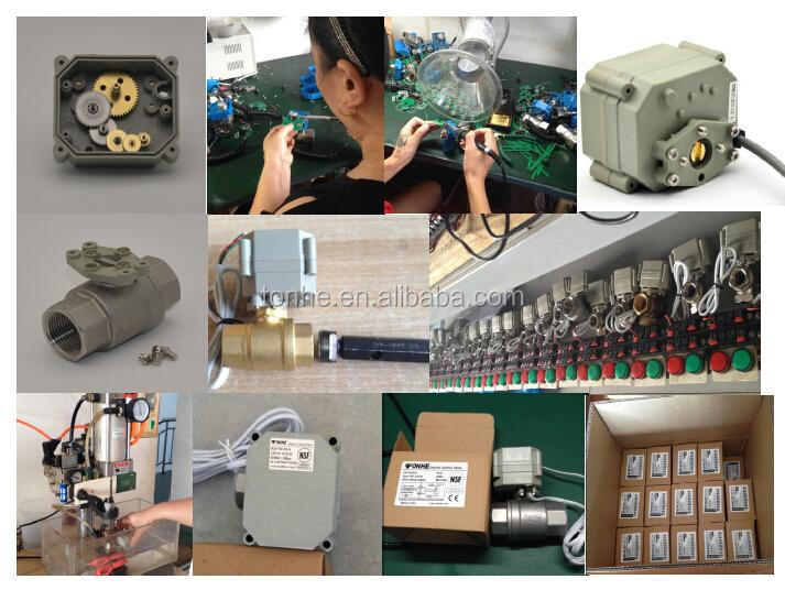 electric actuator valves.JPG