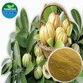extracto de garcinia cambogia hidroxi ácido cítrico
