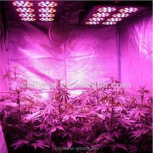 CIDLY LED 400w led grow light, hothouse led grow lights 120*3W grow&bloom full spectrum grow light
