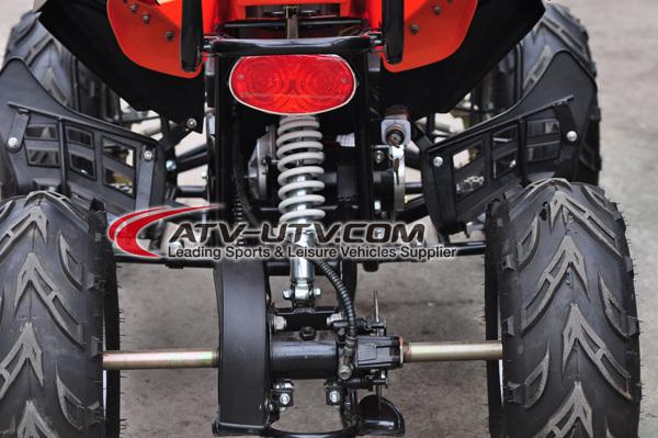 EX Factory Price Electrical ATV EA0507-rear.jpg