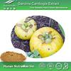 Brindall Berry Extract, Brindall Berry Extract Powder, Carcinia Cambogia Weight Loss