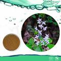 Sesso medicina di erbe cinese 5% 10% 20% 98% icariin estratto di epimedium