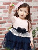 Child Baby Dress Model Frocks Autumn Dress Lace Fabric For Fashion Dress