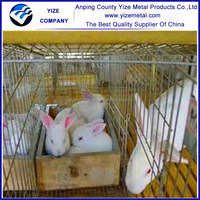 Alibaba china hot sale new style commercial rabbit cage,high qualit rabbit farm cage,galvanized rabbit cage ( gold exporter )