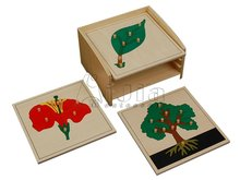 montessori de madera rompecabezas de la botánica