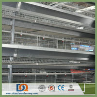 A Type Ladder Professional Design Battery Chicken Cage System