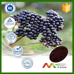 NSF-cGMP maunfacture and 100% natural maqui berry juice wholesales