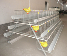broiler cage price with turn key service small chicken coop design