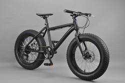 20 inch Fat bike customized beach cruiser