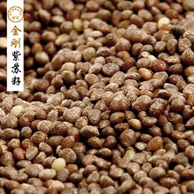 Chinese traditional fresh purple perilla seeds
