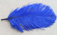High Quality artificial Ostrich Feathers, decorative pheasant feathers wholesale