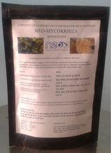 Mycorrhizae VAM