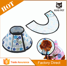 protection dog collar for small dogs