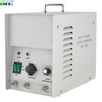 1 g/h river water purification system ozone generator