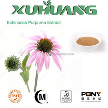 Pure natural and Organic Echinacea Purpurea extract,Cichoric acid