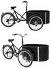 diesel engine cargo 3 wheel motorized bike