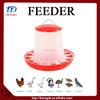 PID control farm pig feeder system equipment Kenya