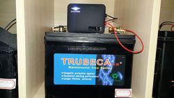 High Quality Battery Auto Pulse Desulfator