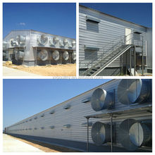 Hot-dip galvanized poultry chicken shed/ house with full equipments