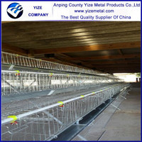 Direct Factory Chicken farm/used poultry farming equipment/automatic poultry farm equipments