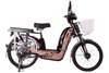 battery cargo electric bicycle with low price 450w