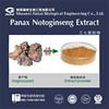 10%-95% top quality bulk notoginseng triterpenes